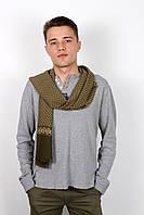 Мужские шарфы Мужской шарф Кастор зелено-салатовый 160*30 (SHM-02)