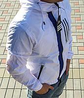 Ветровка мужская ADIDAS (реплика)