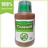 """Гербицид """"Селенит"""" для уничтожения сорняков (150 мл) от Ukravit (оригинал), фото 2"""
