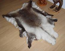 Шкура оленя (финского) смешанной раскраски, фото 3