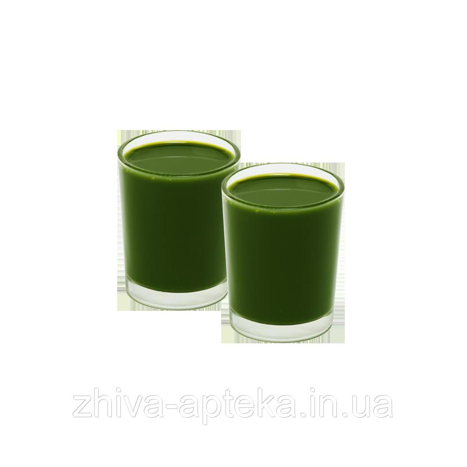 Свежевыжатый 100% сок ростков ячменя, 30 мл.