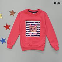 """Утепленный свитшот """"Собачка"""" (с пищалкой) для девочки. 86-92;  98-104;  110-116;  122-128 см, фото 1"""