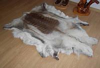 Шкура оленя северного оленя светлой раскраски, фото 1