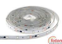 Профессиональная светодиодная лента  Foton SMD 5050 (30 LED/m) RGB RW 1 LED IP68, фото 1