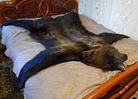 Шкура медведя, фото 1