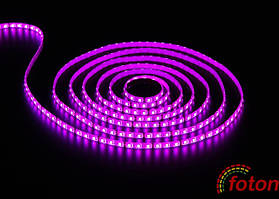 Профессиональная светодиодная лента SMD 5050 (60 LED/m) RGB IP54