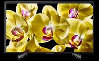 Телевизор Sony KD75XG8096BR2 (Официальный ТВ, Настройка + Проверка), фото 1