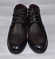 Мужские зимние кожаные ботинки, Cevivo, коричневые, шнурок + змейка