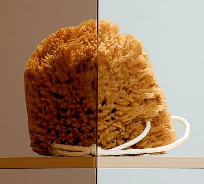 Бокова Стінка для душової кабіни Radaway Premium Plus S 100 (33423-01-08N), фото 2