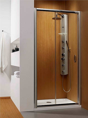 Душові двері в нішу Radaway Premium Plus DWJ 100 (33303-01-01N), фото 2