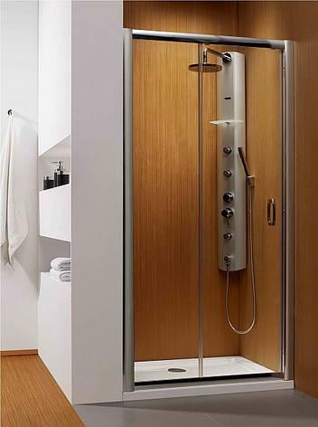 Душові двері в нішу Radaway Premium Plus DWJ 140 (33323-01-08N), фото 2