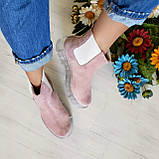Женские зимние замшевые ботинки Chelsea Ice (пудра), фото 9