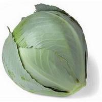 Семена капусты белокочанной поздней Сторема (Storema) F1, 1000 сем., калиброванные, Rijk Zwaan