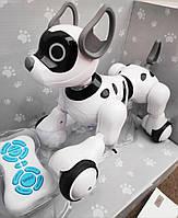 Интерактивная Робот-Собака на пульте управления (рассказывает сказки на русском языке)