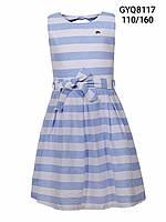 Платье котоновое на девочку оптом, Glo-story 110, 120 рр.