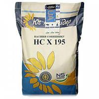 Семена подсолнечника Юг Агролидер HC X 195 Стандарт, фото 1