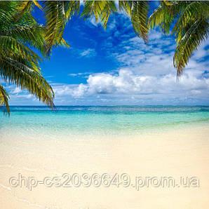 Скинали Пляж Листья Пальм - стекло с фотопечатью
