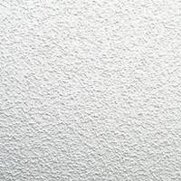 Потолочная плита Armstrong Oasis Board, 600х600х12 мм, фото 1