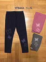 Лосины для девочек, F&D, 1 лет,  № YF8444