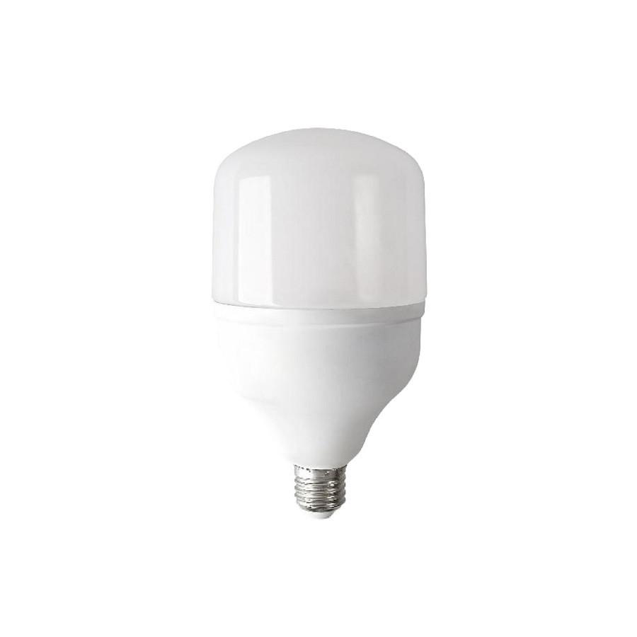 Лампа светодиодная ЕВРОСВЕТ VIS-25-E27 25Вт 6400К (000040888)