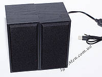 ЮСБ колонки для компьютера, ноутбука (FT101, черн), фото 1