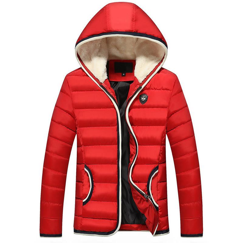 Чоловіча куртка AL-7880-35