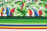 """Лоскут ткани """"Попугаи на ветке"""" №1400, размер 31*78 см, фото 5"""