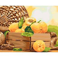 Картина по номерам на холсте Золотистый абрикос, KHO5565