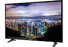 Телевизор Sharp LC-40FG3142E (40 дюймов, 60 Гц, Full HD, DVB-T2/S2), фото 2