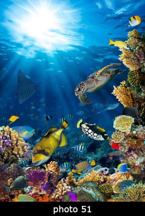 Настенный обогреватель-картина морские обитатели