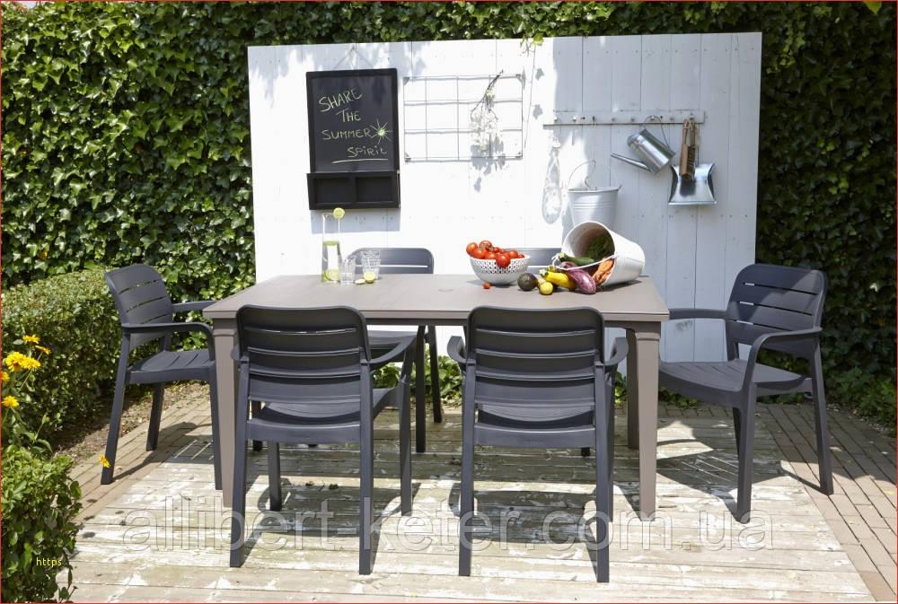 Набор садовой мебели Tisara Futura Dining Set