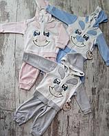 Костюм  для малышей оптом 3-12 месяцев серый