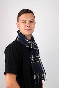 Мужские шарфы FAMO Шарф Алекс синий+зеленый 169*30 (MS-01) #L/A