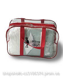Сумка прозрачная в роддом Mommy Bag - S - 31*21*14 см Красная