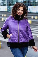 Теплейшая зимняя короткая женская куртка большие размеры ЧУ559 фиолет