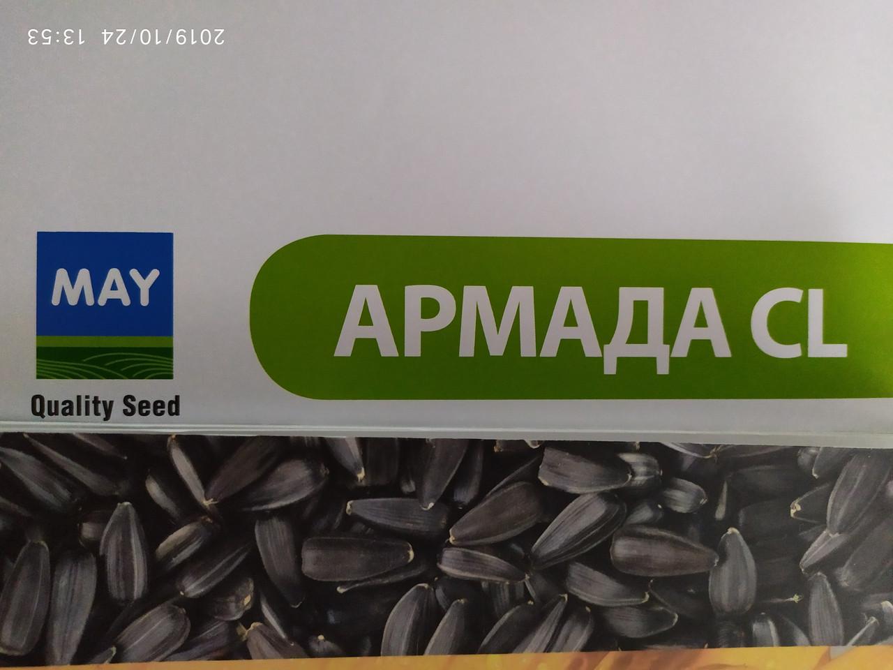 Гібрид соняшника АРМАДА під Євролайтнінг. Соняшник стійкий до посухи та хвороб АРАМАДА