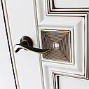 Межкомнатные двери VPorte Linea Arte 02,04, фото 4