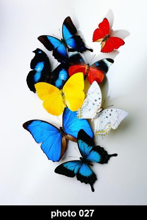 Настенный обогреватель-картина Бабочки
