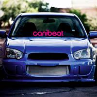 """Виниловая наклейка на лобовое стекло автомобиля """"Canibeat"""""""