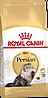 Корм Royal Canin Persian Adult, для взрослых персидских кошек, 4 кг