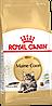 Корм Royal Canin Maine Coon Adult, для мейн-кун старше 15 месяцев, 2 кг + подарок 3 пауча!