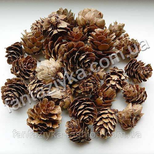 Натуральные шишки лиственницы маленькие, 40г