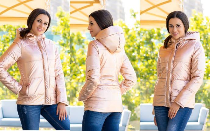 Хорошенькая куртка для прогулок, фото 2