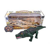Крокодил на радиоуправлении, со световыми и звуковыми эффектами, F139