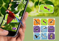 Интерактивные карточки fancy zoo 4D