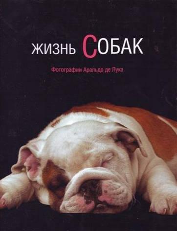 Жизнь собак Арнальдо де Лука, фото 2