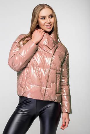Куртка женская демисезонная KTL-295 - 2_беж, фото 2
