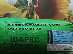 В наявності на складі. Урожайний соняшник ШАРКС 42 ц/га, стійкий до семи рас вовчка A-G, 90-97дней, Румунія / Коссад Семанс
