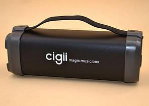 Портативная колонка с FM-радио Cigii F52  Беспроводная аккустика FM MP3 AUX USB. Портативный Bluetooth