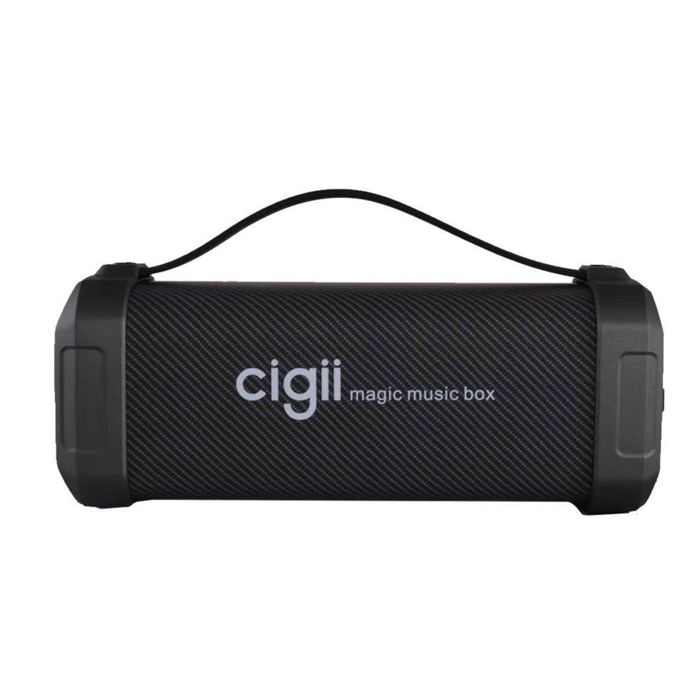 Портативная колонка с FM-радио Cigii F62D Портативный Bluetooth-динамик с шумоподавлением